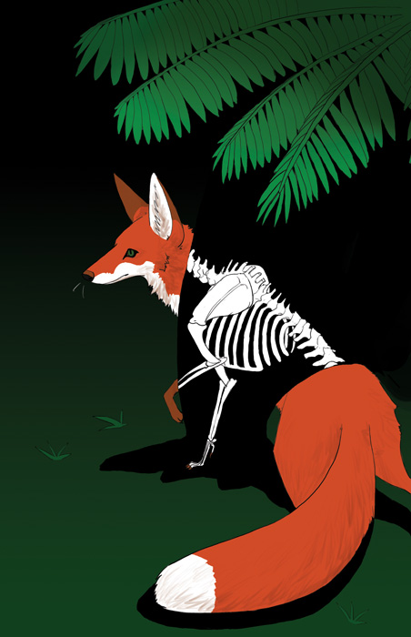 a fox standing in the shadow of a fern, with its skeleton showing